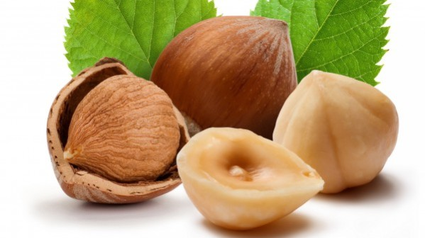 hazelnuts-amazing-health-benefits-and-nutritional-facts-featured-600x337