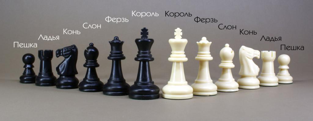 Как играть в шахматы. Фигуры