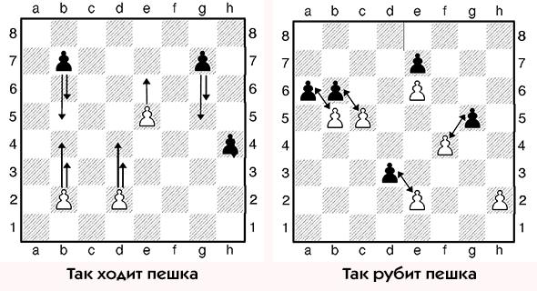 Как играть в шахматы. Пешка