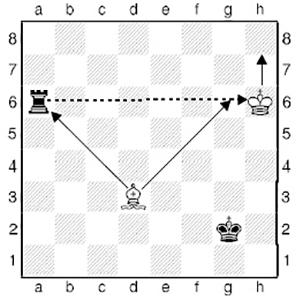 Как играть в шахматы. Король